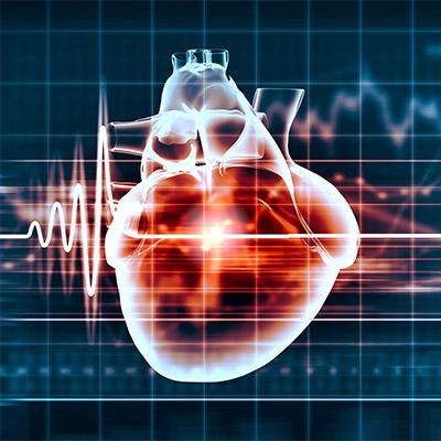 Heartbeat, pulse, medium rate, real sound