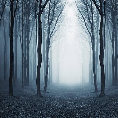 Mystical singing wind
