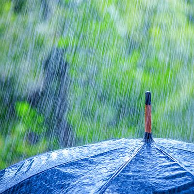 Rain on umbrella - 02